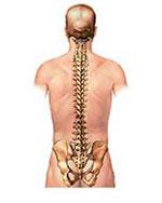 Программа лечения анкилозирующего спондилоартрита (болезни Бехтерева)