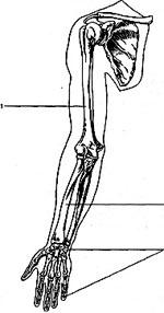 Участки применения физиотерапевтических методов лечения заболеваний суставов